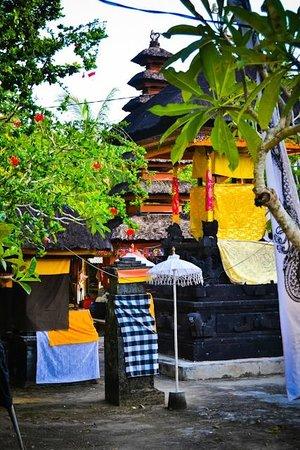 Nusa Lembongan, Indonesia:                   Mushroom Bay