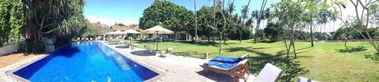 Club Villa: Сад