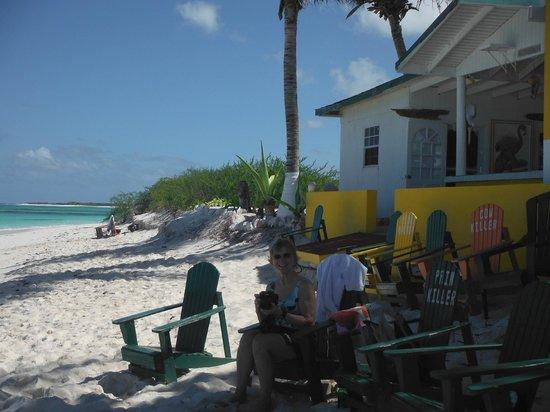 Anegada Island:                   Cow Wreck Beach - looking East