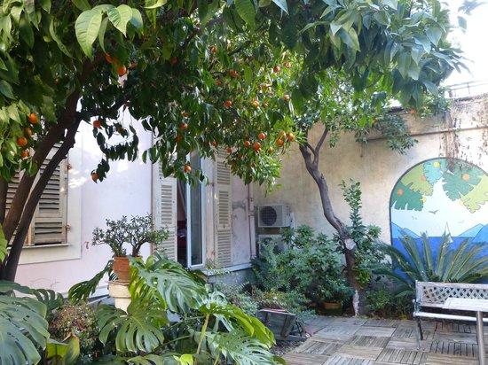 Nice Garden Hotel:                   le jardin