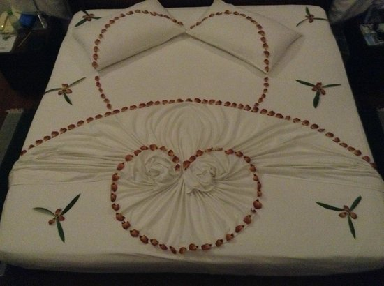 Cinnamon Hakuraa Huraa Maldives:                   My wife's birthday bed decoration.