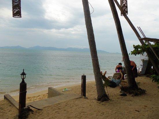 By Beach Resort:                   Good vibes !