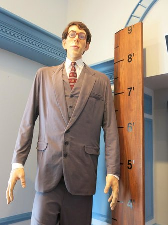 Ripley's Believe It or Not!:                   The tallest man who ever lived