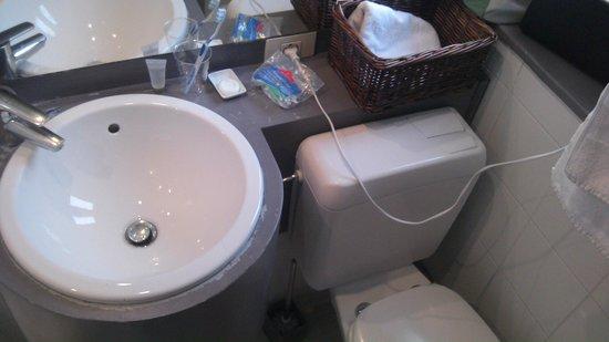 Be Cottage : W.C juste à côté du lavabo ...