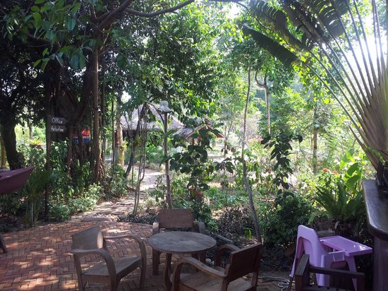 Golden Buddha Beach Resort:                                     The Garden