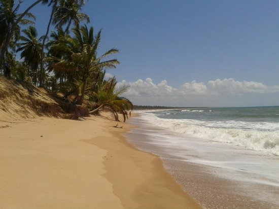 Iberostar Bahia: Vista da praia