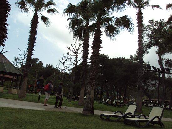 Renaissance Antalya Beach Resort & Spa:                                     jardin magnifique