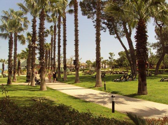 Renaissance Antalya Beach Resort & Spa:                                     jardin ensoleillé