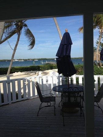 Coconut Palm Inn:                   room view