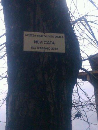 Albergo La Rocca Dei Malatesta:                   livello della nevicata 2012