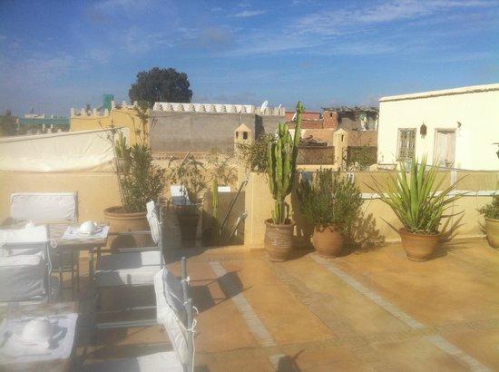 Riad Azoulay:                   grande terrasse du riad