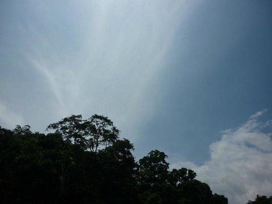 Green Villa Kandy: Terrace View