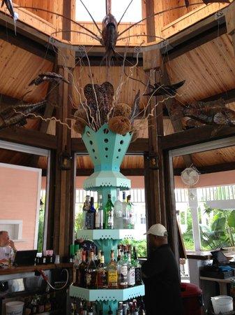 Hope Town Inn & Marina:                   The marina bar