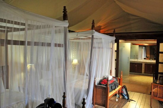 Kilima Safari Camp:                   beds