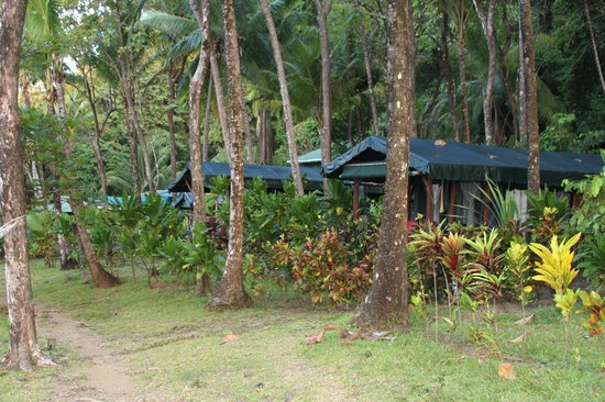 la leona eco lodge tent camp