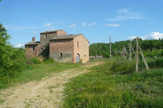 Agriturismo Tenuta Valdipiatta:                   deserted villa