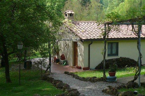 Agriturismo Tenuta Valdipiatta:                   Tosca apartment