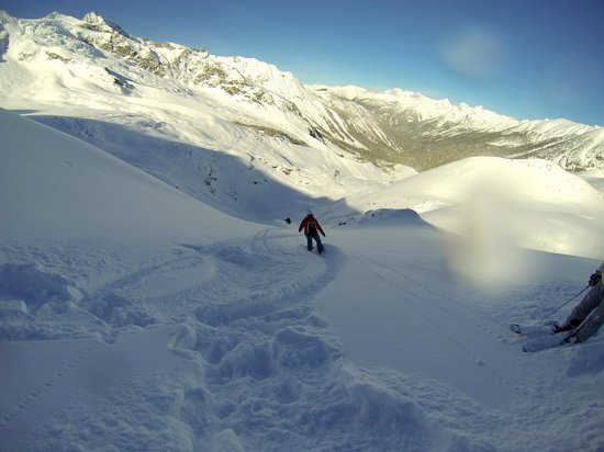 Rk Heliski:                   view from one of the runs
