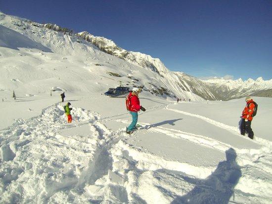 Rk Heliski:                   RK heli ski panorama