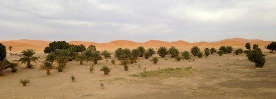 Dar El Janoub:                   Vista del desierto desde la terraza del hotel