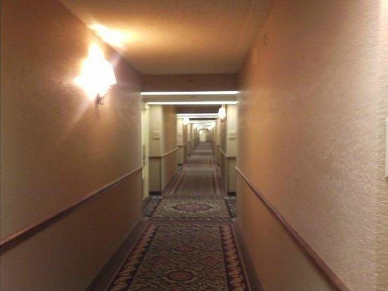 Harrah's Laughlin:                   hallway