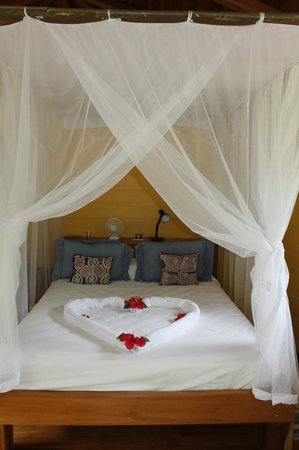 Bosque del Cabo Rainforest Lodge:                   bed in almendra