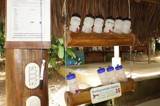 Bosque del Cabo Rainforest Lodge:                   degradable water bottles