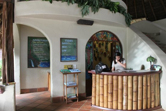 Bosque del Cabo Rainforest Lodge:                   reception