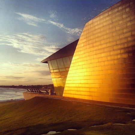 "Playa VIK Jose Ignacio:                   The ""Sculpture"""