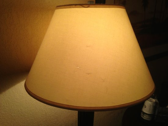 Holiday Inn Orlando SW - Celebration Area:                   Dirty lamp shade
