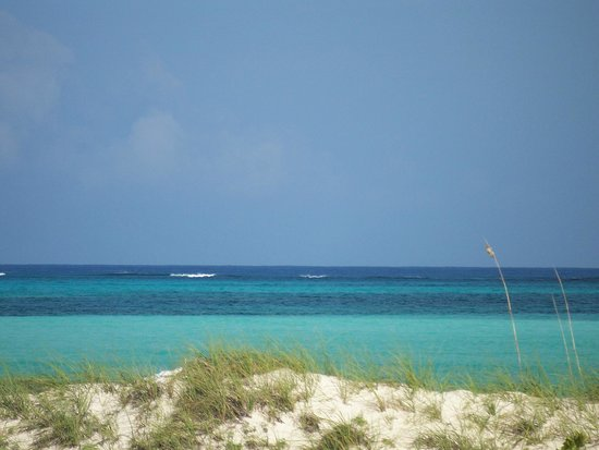 COMO Parrot Cay, Turks and Caicos :                   View from Pool