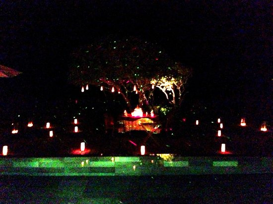 Amanyara:                   Dinner under the tree of lights...