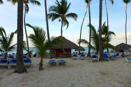 Natura Park Beach Eco Resort & Spa:                                     Beach
