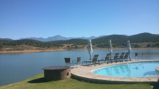 Buffelsdrift Game Lodge:                   Pool