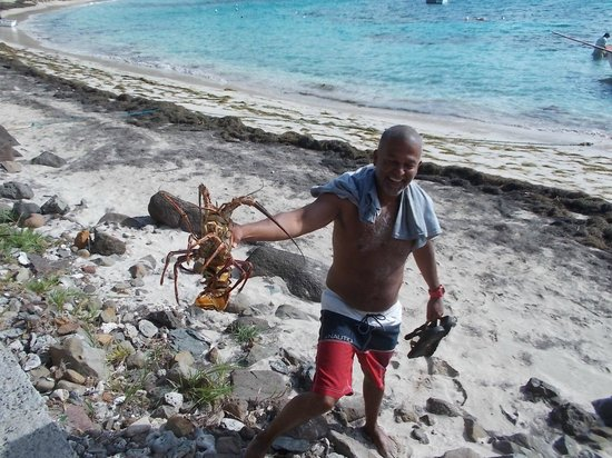 Bequia Beachfront Villas:                   Lobster for lunch