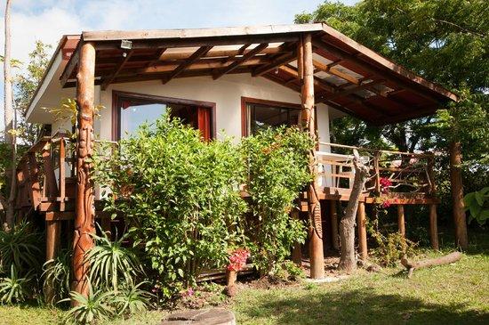 Mana Nui Inn:                   cabin
