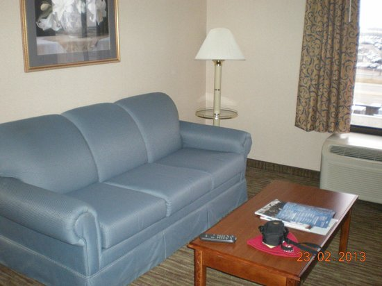 Days Hotel Buffalo Airport :                   Large couch-clean room