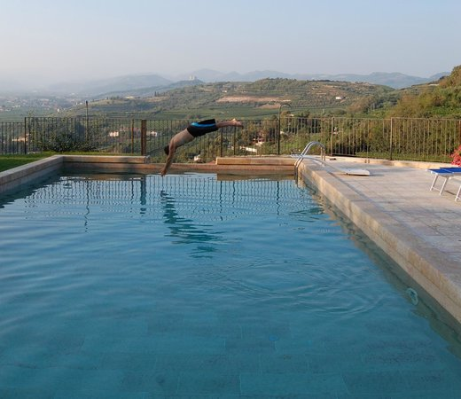 Villa Aldegheri:                   Gorgeous marble pool