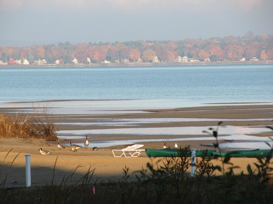 Cherry Tree Inn & Suites : the magnificent autum view of Traverse Bay, Traverse City Michigan from your room