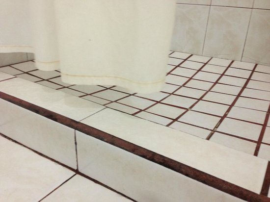 Tropicana Hotel:                   NIce grout and note how the shower curtain is too short