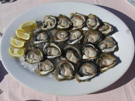 Bota Sare - Mali Ston:                   The most delicious oysters we have ever tasted! Yummmmmmmy!
