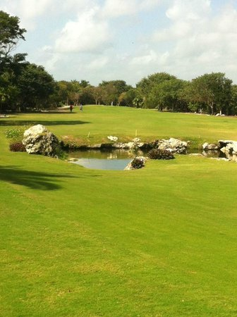Puerto Aventuras Golf & Racquet Club:                   PA #1 Cenote 170 yds from the white tee...190 to carry.