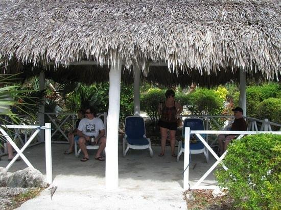 Melia Cayo Santa Maria:                   Getting some shade