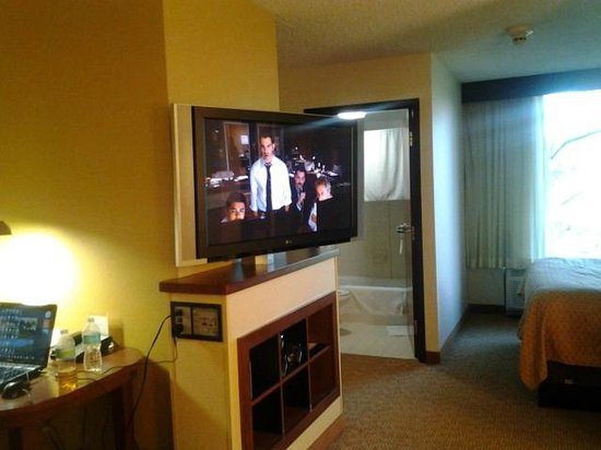 Hyatt Place Tampa Airport/Westshore :                   flat screen tv