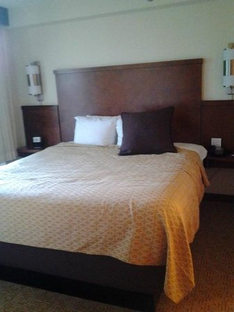 Hyatt Place Tampa Airport/Westshore:                   king bed