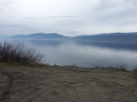 Lake Okanagan Resort:                   morning stroll by the lake
