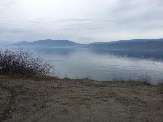 ليك أوكاناجان ريزورت:                   morning stroll by the lake                 