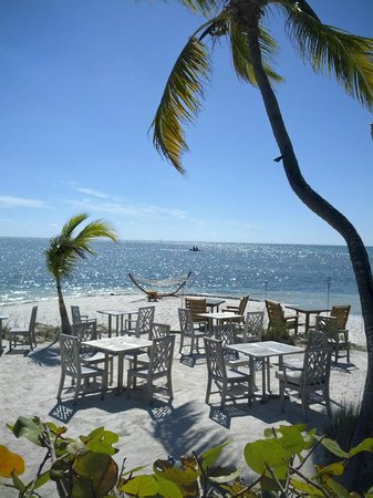 Little Palm Island Resort & Spa, A Noble House Resort:                   view from lunch