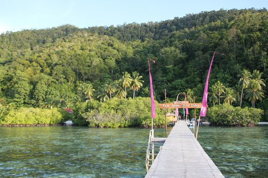 Raja Ampat Dive Lodge:                   Jetty