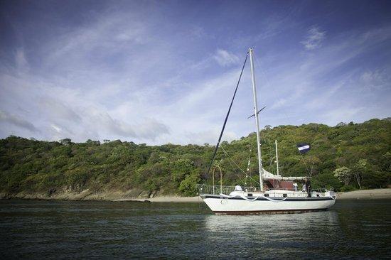 Pelican Eyes Resort & Spa: Sailing trips